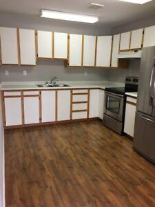 2 Bedroom 1 Bathroom Daylight Basement (Floor Plans)