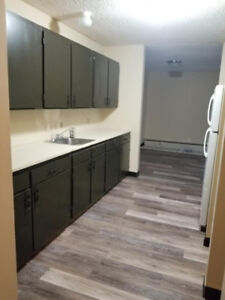 Newly renovated 2 bedroom unit $1000 rent available immediately