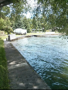 Electric Boat Lift and Boardwalk!