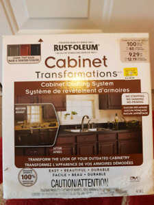 Cabinet painting kit
