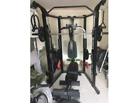 Eclipse RS 7000 with 110kg WER Sports weights