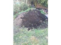 FREE SOIL in Morley