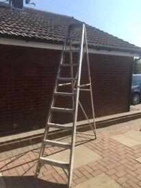 10 Tread step ladders