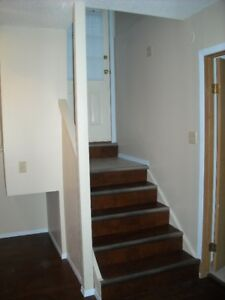 2 bedroom lower unit in canmore