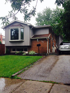 Beautiful 3+1 Bedroom House in Forest Hill Kitchener / Waterloo Kitchener Area image 1