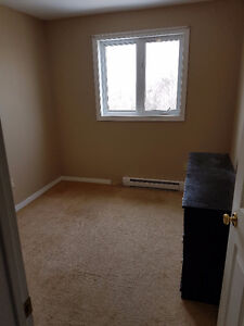 400$ Room Rental St John's. Pet Friendly. Available Now.