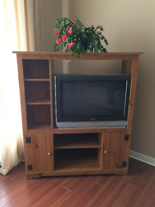 TV and Cabinet Both Great Condition $75 OBO