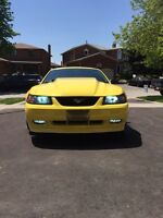2002 Mustang Gt for sale!! Lots of. Upgrades must go!!!