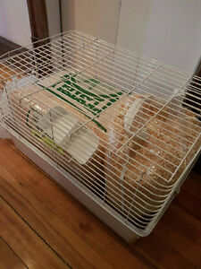 Guinea Pig Cage and Woodchips