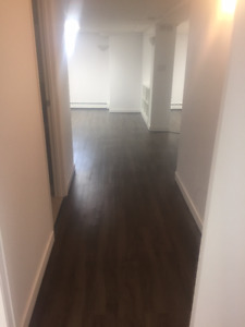 Basement apartment steps away from U of R.