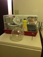 Animal Cage, And Accessories