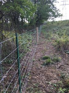Dog, farm, field and property fencing Kitchener / Waterloo Kitchener Area image 2