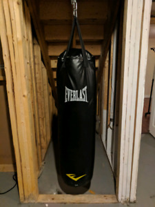 50 pound everlast punching bag and weighted skipping ropes
