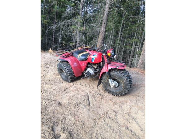 1984 Honda ATC 200 ES BIG RED