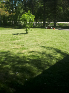 Too hot to mow?? Need garden done we can help