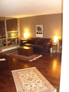 executive furnished one-bedroom with parking super view