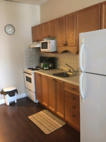 Bachelor apartment on Division St available now