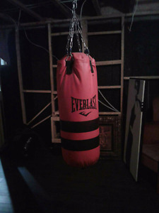 Everlast red punching bag 40lbs