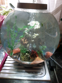 Bio orb fish tank 30 litres