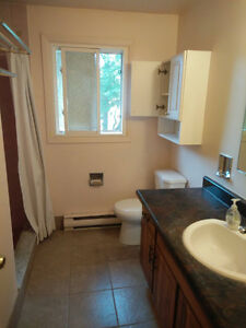 2/4 Rooms Available for Winter 2017 4 Month Sublet Kitchener / Waterloo Kitchener Area image 3