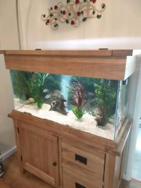 Solid Oak Aquarium
