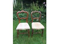 Pair of Victorian Balloon back chairs.