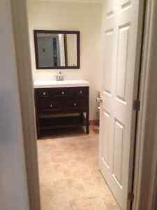 LOCAL REDSIDENTIAL PLUMBING SERVICES West Island Greater Montréal image 3
