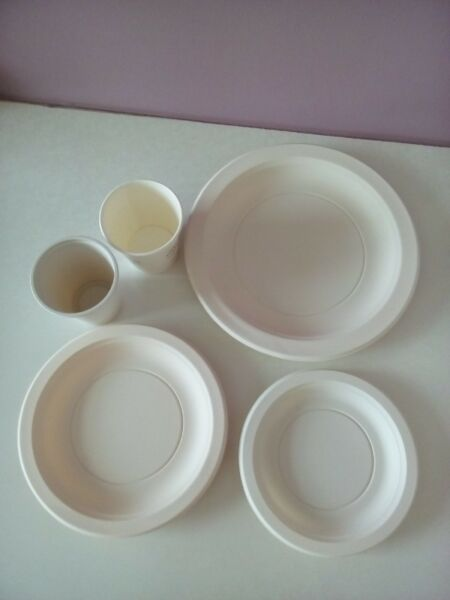 Brand New Disposable Plates, Cups, Forks, Spoons