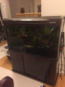 90 Gallon Seamless Curved Glass Aquarium with Stand