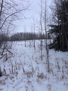 Land For Sale - Acreage