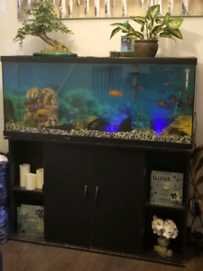 55gal. Complete