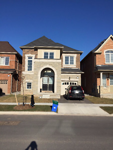 NEW DETACHED HOUSE FOR LEASE - OAKVILLE (PRESERVE AREA)