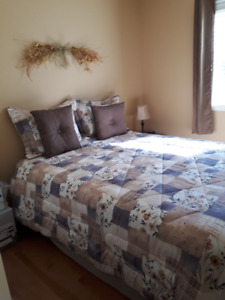 Brand new queen size mattress and bed spring
