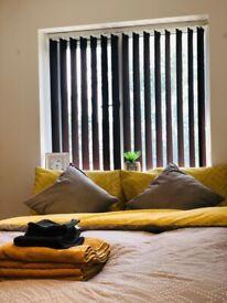 Ensuite Room available - Una Avenue