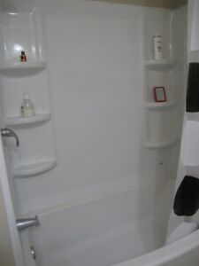 Plastic Shower Molding with Shelving