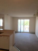2 Bedroom suite ready to move in! Northeast Edmonton!   Manning!
