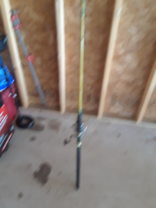 salmon rod and reel