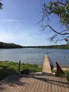 Seasonal RV lots at Halfmoon Lake Resort Strathcona County Edmonton Area image 1