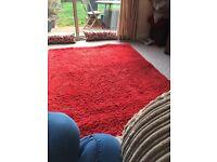 Red shaggy ikea rug