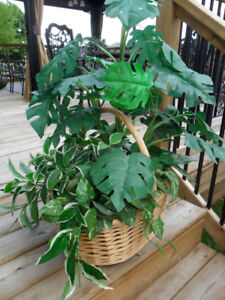 Outdoor Decor Large Artificial Plant in WIcker Basket