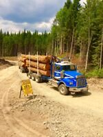 Experienced Short Log Truck Driver Wanted