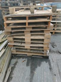 Free bonfire wood broken Pallets