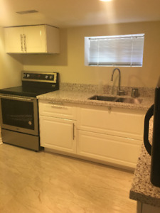 Newly renovated one bedroom basement apartment