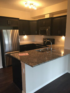 LEASE TAKE OVER- NEW 2BEDROOM & 2 BATH APARTMENT