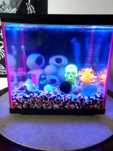 10 gallon complete set up  glow tank.