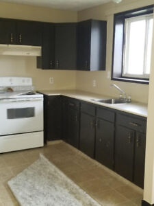 Newly renovated 1 Bed plus Den Available immediately $900