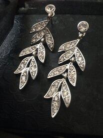 Stunning Silver Earrings