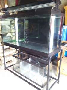 ( NEW PRICE $400) 90 Gallon Saltwater Marine Fish Tank