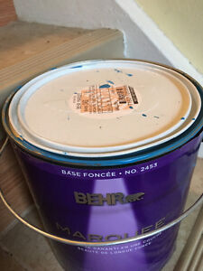 Interior paint with primer blue