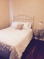 furnished downtown condo - avail Dec 3rd